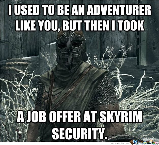 Misunderstood Successful Skyrim Guard