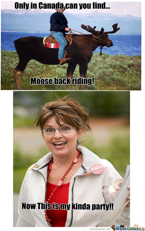 Moose Back Riding