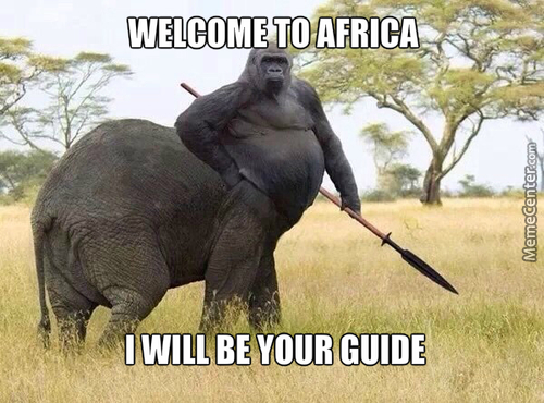 Most African Animal Ever