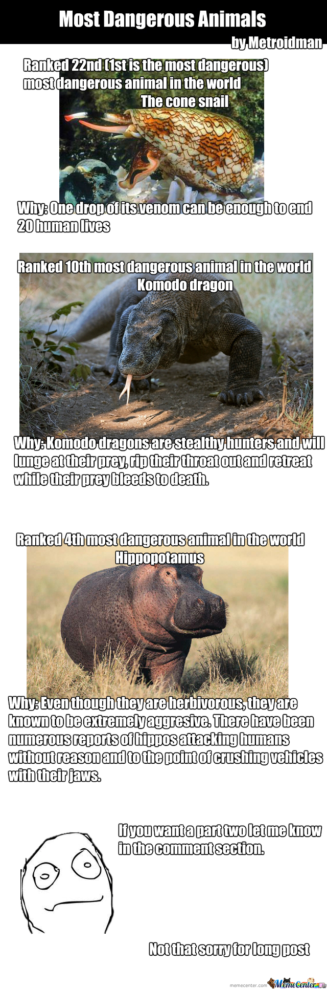 Most Dangerous Animals In The World