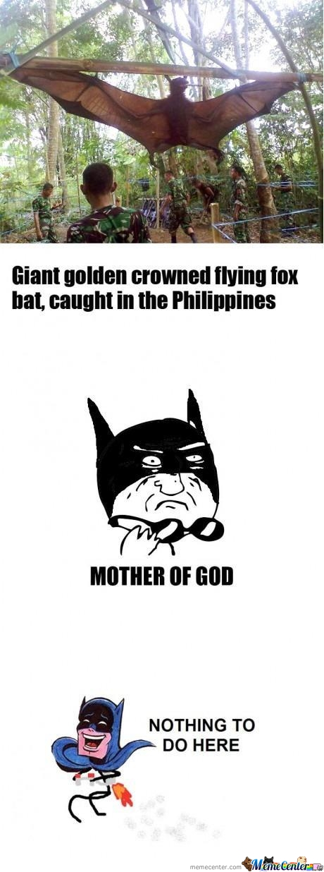 Mother Of Bats!