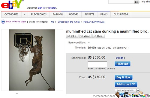 Mummified Cat Slam Dunking A Mummified Bird