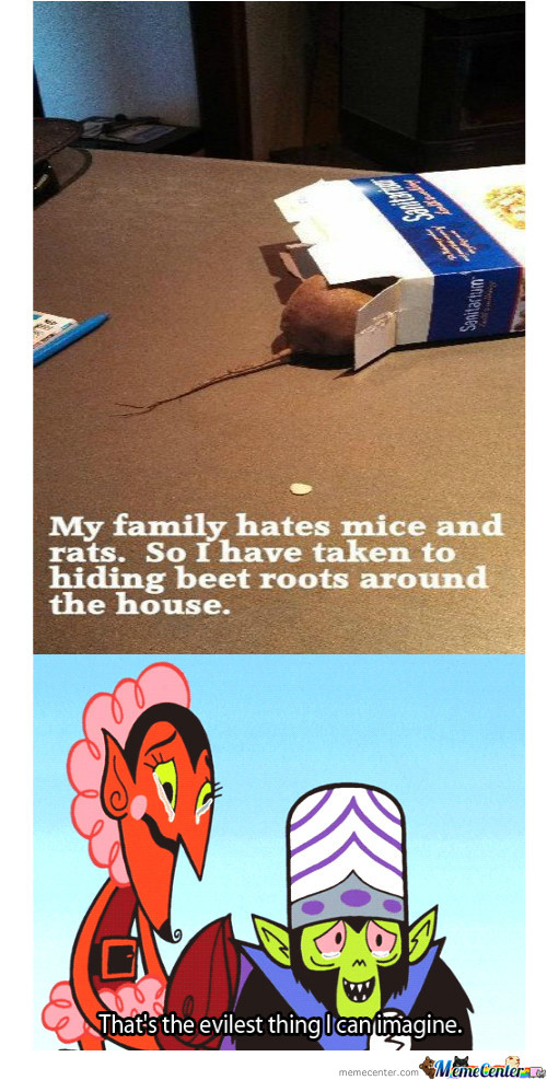 My Family Is Afraid Of Mice