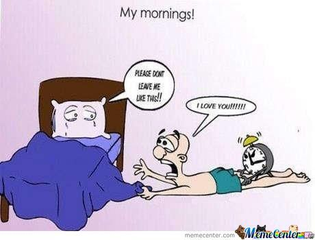 My Mornings!