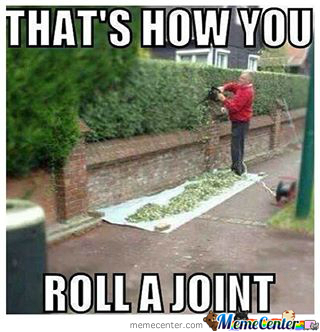 My Naboureno Was Cutting His Hedge & Used This To Catch The Droppings; Thank You Stoner Mind