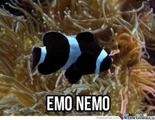Nemo Going Through Teenage Years