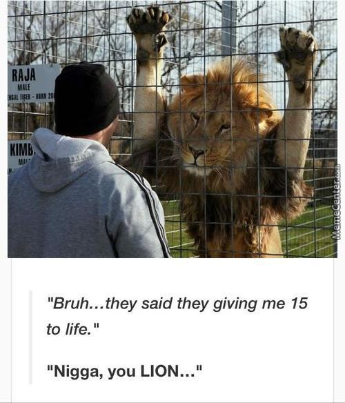 Never Trust A Lion, They Always Lying