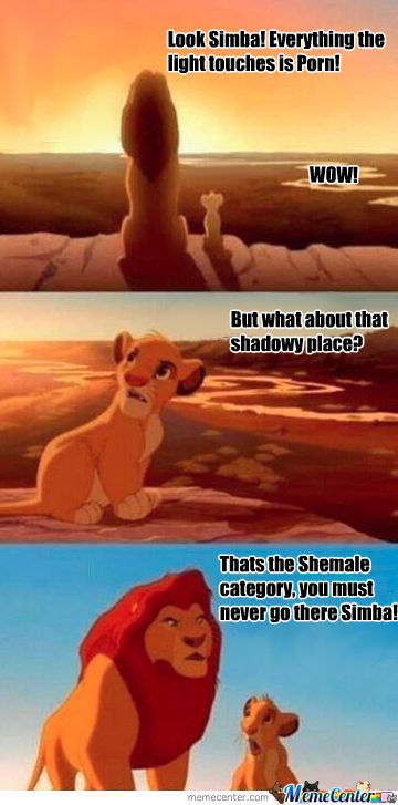 Never Watch Shemale!