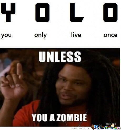 New Meaning For Yolo:not My Meme But Should Get Shown To People
