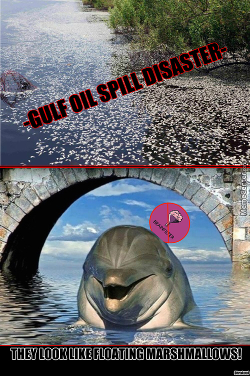 New Meme: No-Filter Dolphin (Episode: Gulf Oil Spill)