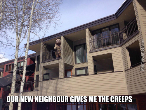 New Neighbour