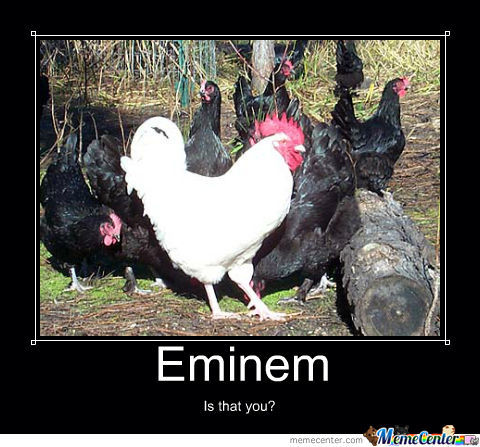 No Hate Towards Eminem Peoples :d