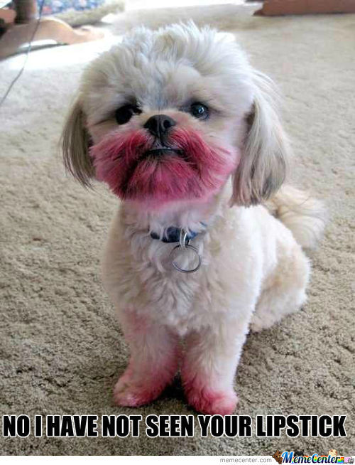 No I Have Not Seen Your Lipstick