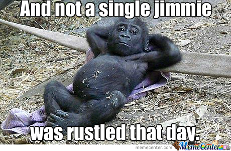 No Jimmies Rustled ;-)