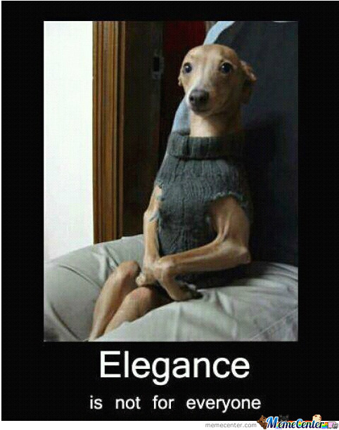 No One Has Elegance Like Me