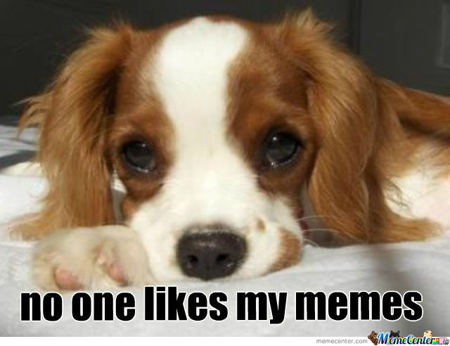 No One Like's My Meme's