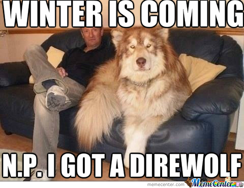 No Problem I Got A Direwolf