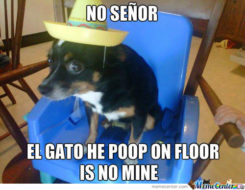No Senor