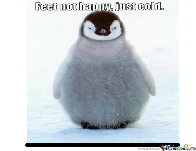 Not-So Happy Feet...