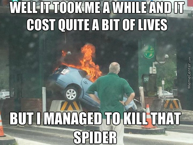 Now Honey, We All Know The Only Way To Kill A Spider Is Fire So I Have To Crash This Car