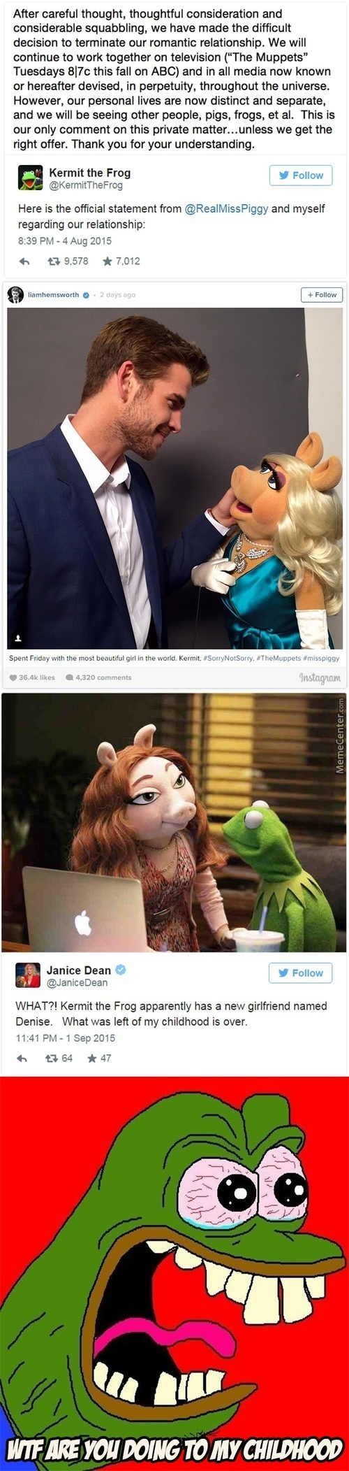 Now I 100% Know That Kermit Have A Pig Fetish