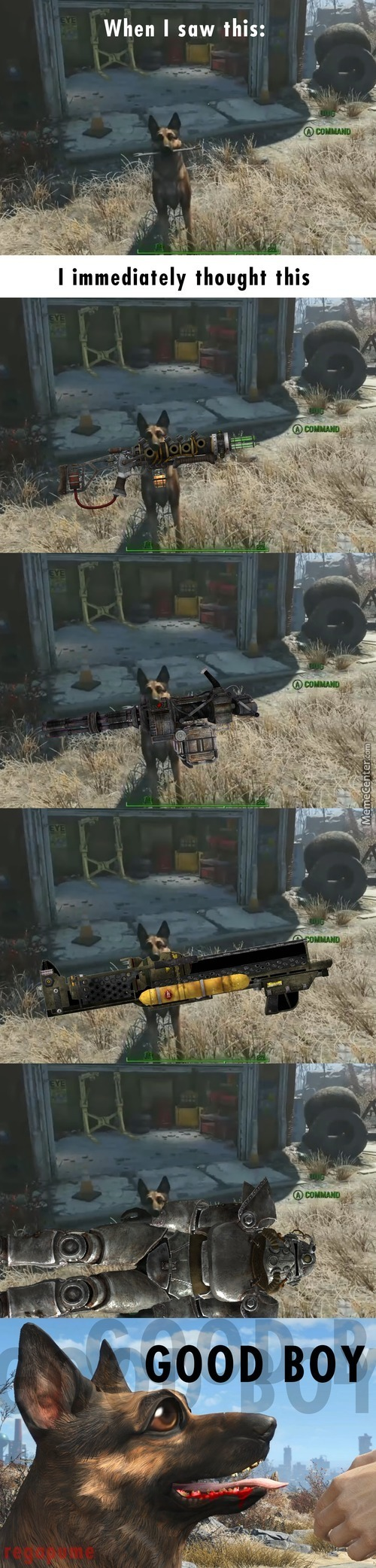 Now Thats What I Call A Useful Companion. [Fallout 4]