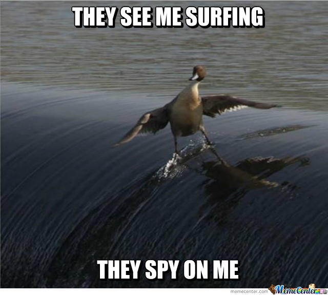 Nsa Spying Lvl: Ducks