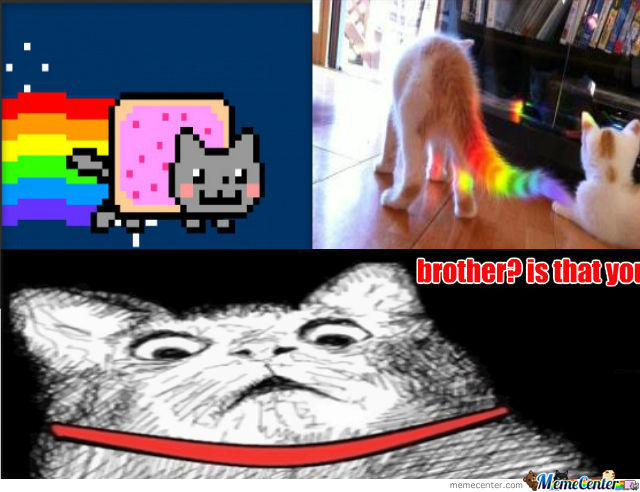 Nyan Brother
