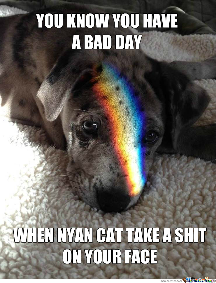 Nyan Cat Don't Like Dogs