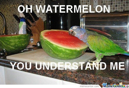 how to choose a watermelon facebook
