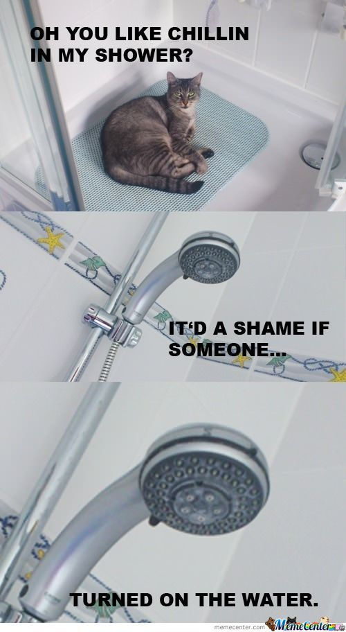 Oh, You Like Chillin In My Shower?