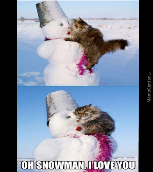 Oh, You Silly Snowman *0*
