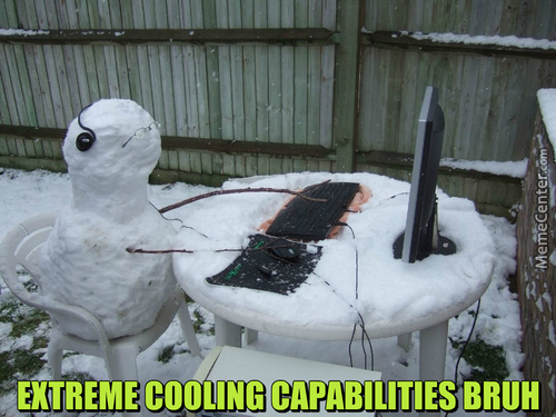 On The Internet Nobody Knows You're A Fackin' Snowman