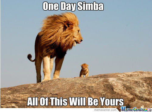 One Day, Simba, All Of This Will Be Yours