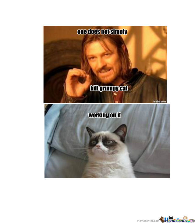 grumpy cat does not - photo #19