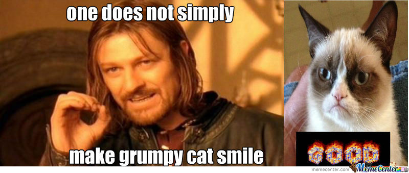 grumpy cat does not - photo #28