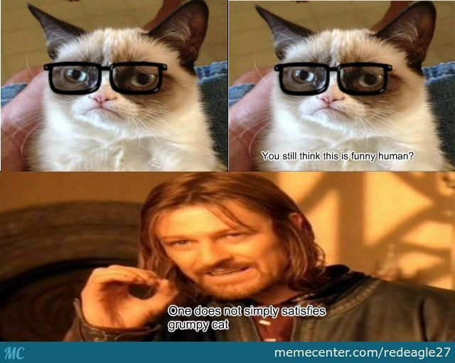 grumpy cat does not - photo #21
