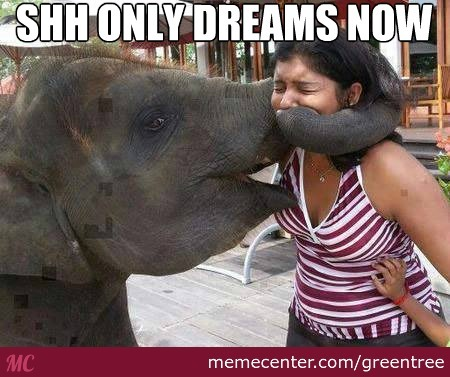 Only Dreams!
