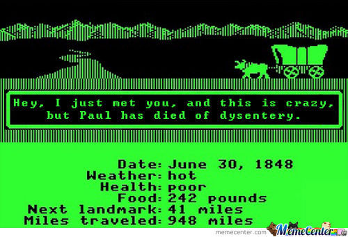 Oregon Trail. How We Love You