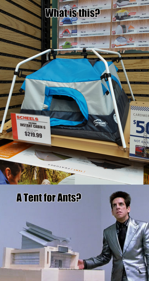 Our Next Tent Has To Be At Least... Three Times This Size
