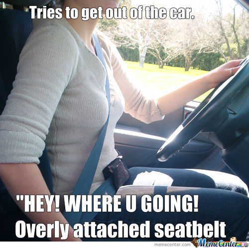 Overly Attached Seatbelt