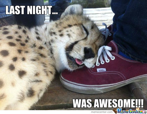 Overly Drunk Cheetah.