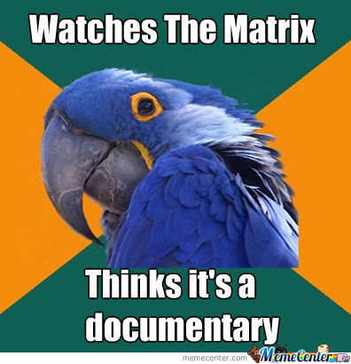 Paranoid Parrot Watches The Matrix