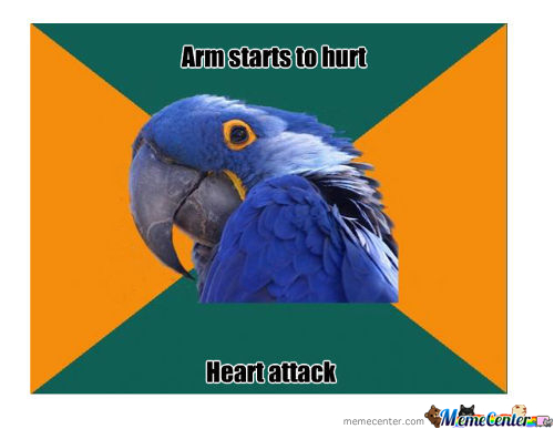 Paranoid Parrot's Arm Starts To Hurt