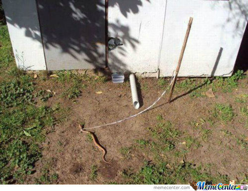Peeps, Le´me Tell Y´all Bout My Pet Snake