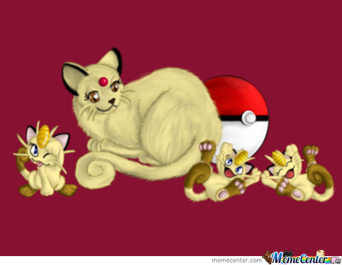 Persian And Meowth Kittens