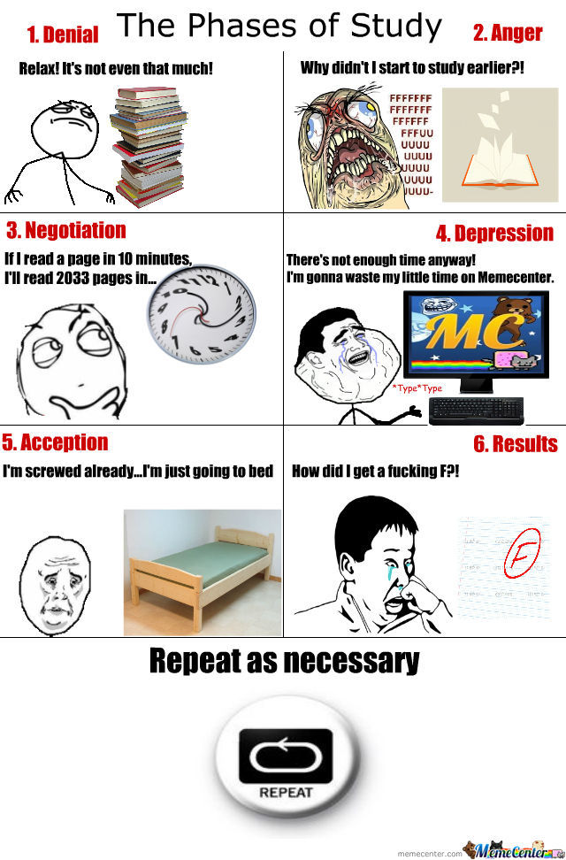 Phases Of Study