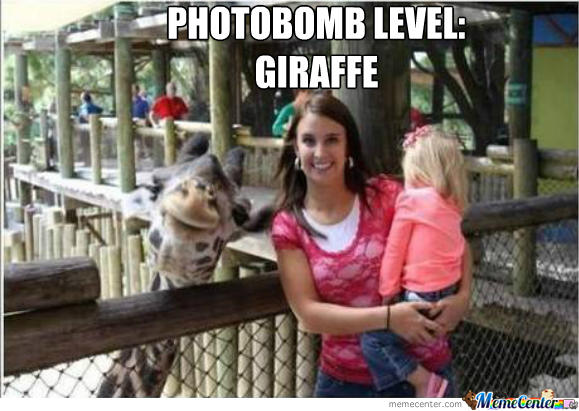 Photobomb Level: Giraffe