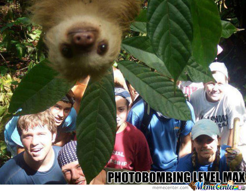Photobombing Level Maximum