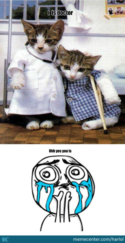 Php Cat Doc